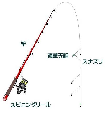 マダイの投げ釣り仕掛けと釣り方【時期】