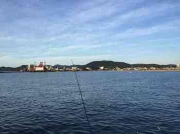 タチウオ釣りの時期(シーズン)と時間帯