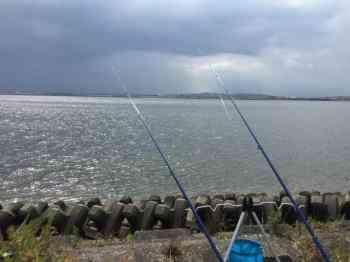 ウナギのブッコミ釣り