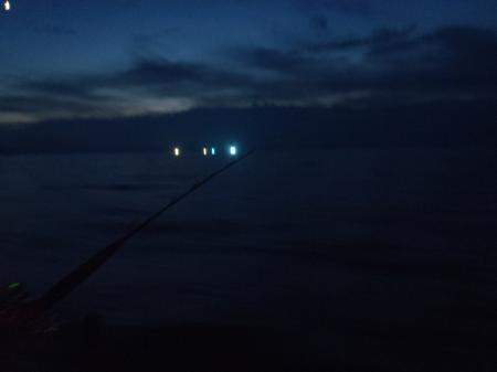 青物釣りの仕掛けと釣果