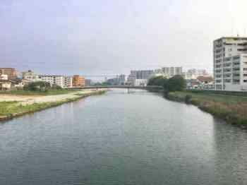 シーバス 河川 ルアー