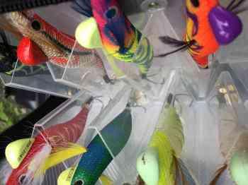 タコ釣りのエギの色・重りなどのおすすめ