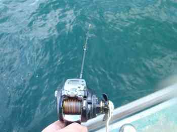 タチウオのテンヤ釣りのリールのおすすめ