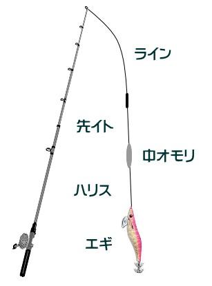 コウイカ 釣り 方