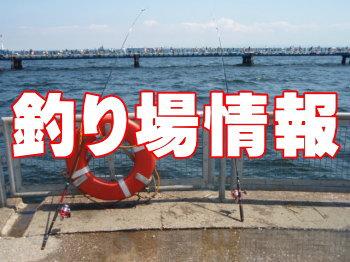 釣果 泉佐野 食品 コンビナート
