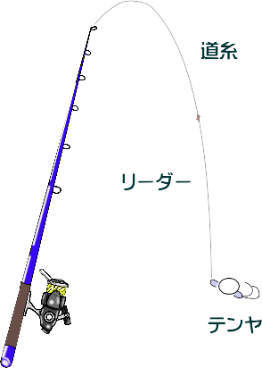 イイダコ釣り!東京湾でのテンヤ仕掛け
