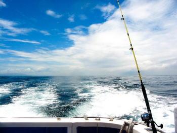 キハダのフカセ釣り(泳がせ)仕掛けと釣り方