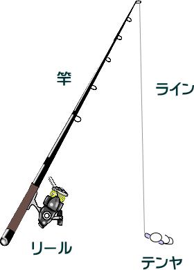 イイダコのテンヤ釣り仕掛けと釣り方【堤防】