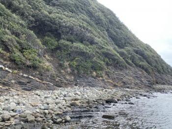 【ムラソイ釣り】ゴロタ浜でのルアー釣り仕掛けと釣り方