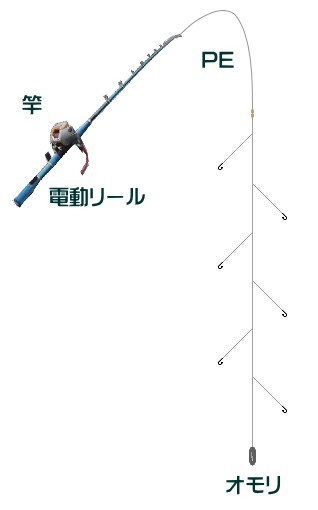 ヒラメの落とし込み釣り仕掛けと釣り方【船】