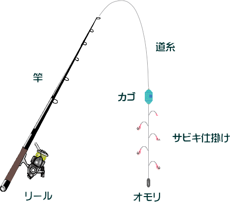 サビキ釣りのカゴの種類