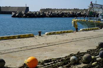 タコ釣りのポイント!漁港ではどこを狙えばよい?