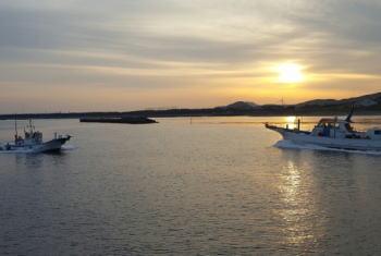ハナダイ(チダイ)釣りの時期