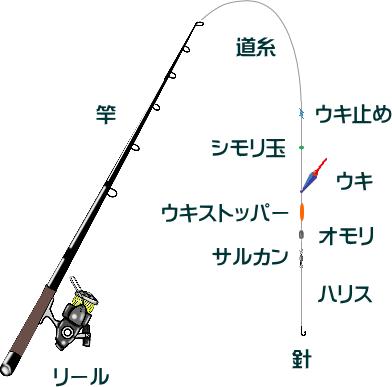 カマス釣りのウキ釣り仕掛けと釣り方【堤防】