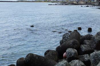 アジングのプランクトンパターンのタックルと釣り方