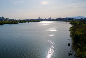 【シーバスのデイゲーム】夏の河川におけるおすすめのルアーなどは?