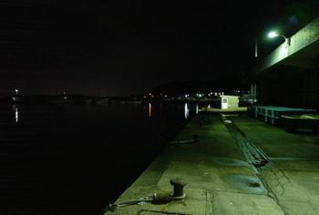 夜のウキ釣り仕掛けと釣り方