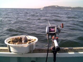 イナダのコマセ釣り仕掛けと釣り方