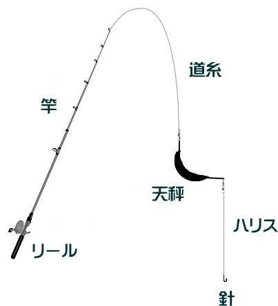 マゴチの泳がせ釣り仕掛けと釣り方【船】