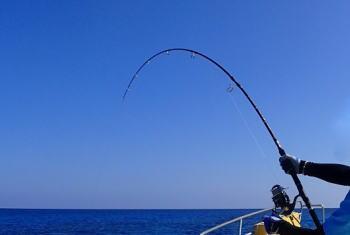 キハダキャスティングのタックルと釣り方