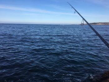 シーバスの投げ釣り仕掛けと釣り方